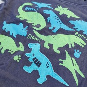 Dinosaur long sleeve! Blues and greens